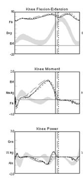 FRO Knee Kinematics/Kinetics FRO s No change in knee kinematic or kinetics Case 5 -