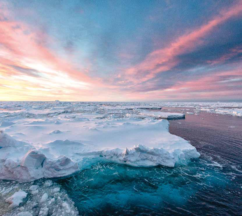 The Antarctic Ocean Alliance is a coalition of environmental and conservation organisations working to support the creation