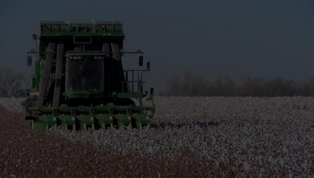 2018 Cotton Market Outlook: At What Price Sh