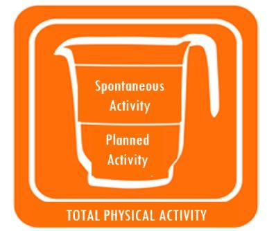 Session 8: Step Up Your Physical Activity Plan In Session 4 you learned that both planned and spontaneous physical activities are important. Together they make up your total day-to-day activity level.