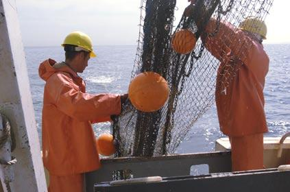 Connecticut and New York waters) are selected for sampling.