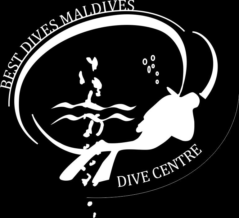 Our PADI & VDWS certified Best Dives Dive & Water Sports Center offers courses and expeditions to