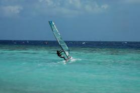 per person Snorkel House reef with guide 27,50 per person Wind Surfing Windsurf lesson 1