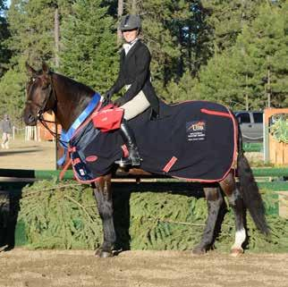 USEF NATIONAL (A) RATED HUNTER DIVISIONS AND CLASSES DIVISION SECTION CLASS DIVISION FEE CLASS FEE PRIZE MONEY Per class Regular Conformation Hunters 3 9 A 2, 11, 12, 87, 88, 92 $180 Division Fee