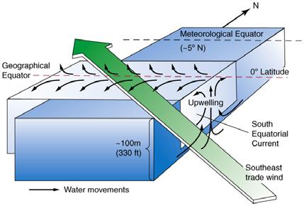 This causes nutrient rich deep water to enter the surface water which gives rise to rich plankton