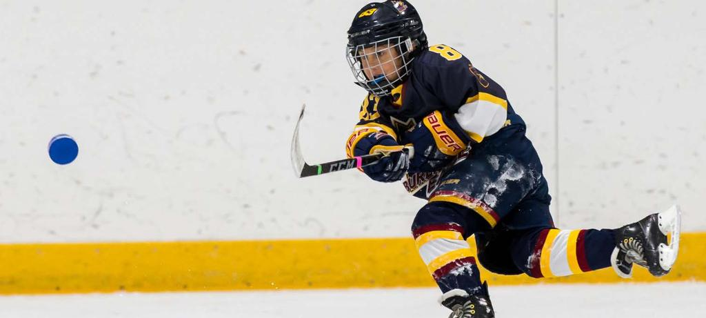 TYKE (7 YEARS OLD) SEASONAL STRUCTURE Effective 2018-19 MONTHS September October November - March PHASE 26 weeks Development Season 6 Weeks Regular Season 20 Weeks VOLUME 42 practices 22-30 games 12