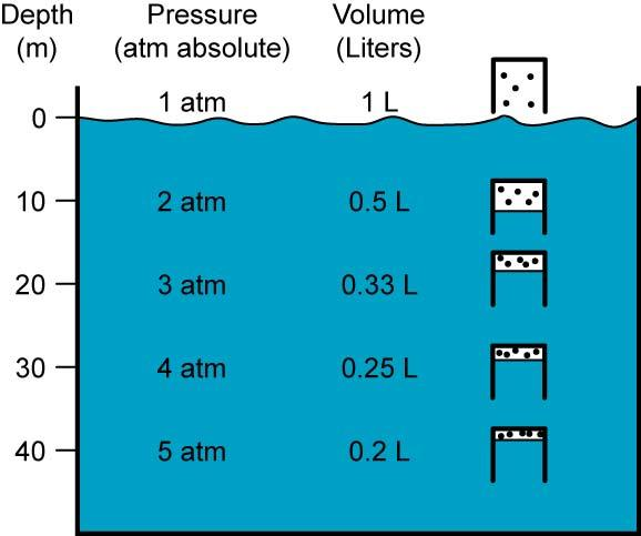 For example, Figure 17 details what happens if 1 liter air is taken under water in an open beaker: Figure 17: 1 Liter Beaker of Air Conforming to Boyle s Law under Water P 1 V 1 = P 2 V 2 = P 3 V 3 =