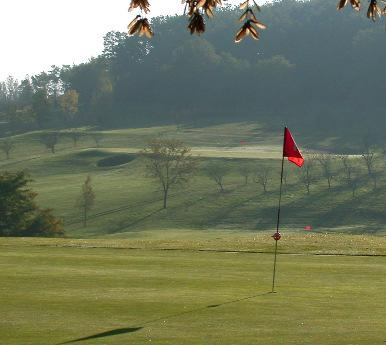 the course meanders through an old fruit farm, where wayward shots can be rewarded by
