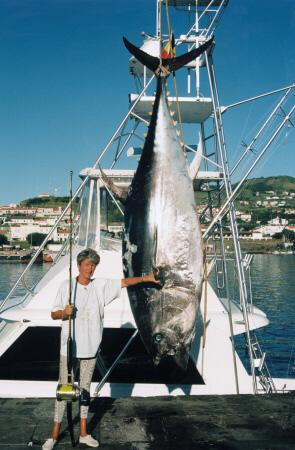 destroyed (trawling) 150 dead zones in 2004, double since 1990 (UN data)( fertilizers) Four examples Tuna fishery (dolphins, overfishing, mercury) Worldwide decline in all