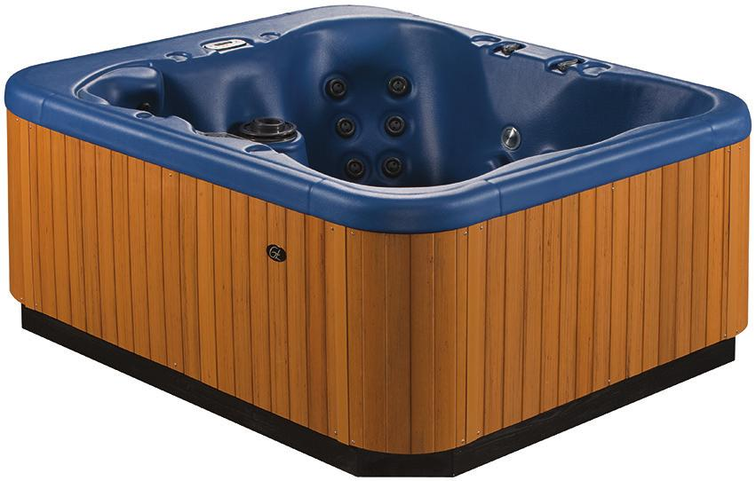 Spa Features. Great Comfort at an Attractive Price. Customer-driven ...
