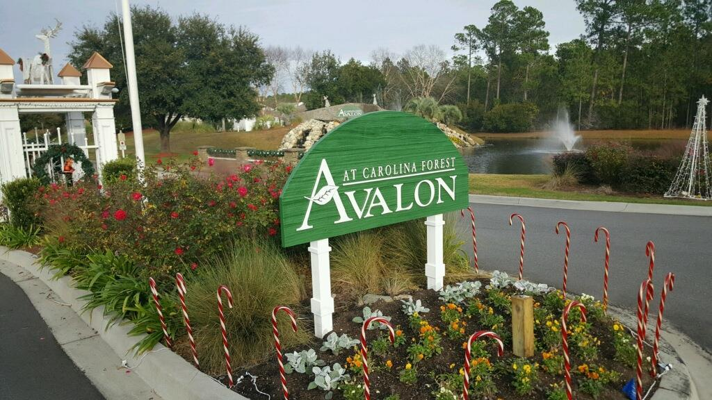 The Avalon Board of Directors would like to comment about homeowners that notice issues in the neighborhood that they post on social media thinking that something will be done.