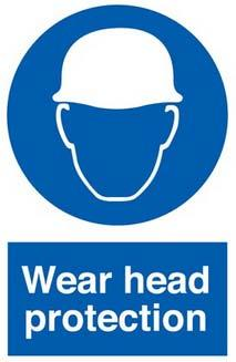 Head Protection What are some causes of head injuries? Flying or falling objects (tools, materials, etc.