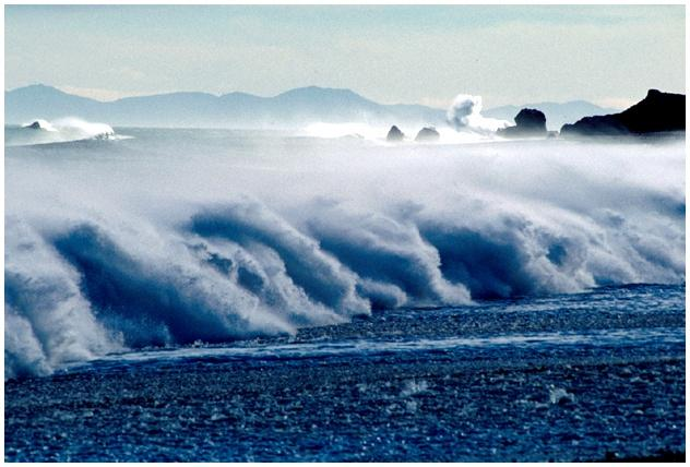 Waves are Key to Shoreline Dynamics Waves created by winds blowing over the ocean Wave height depends on