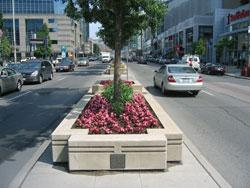 STREETSCAPING THEMES