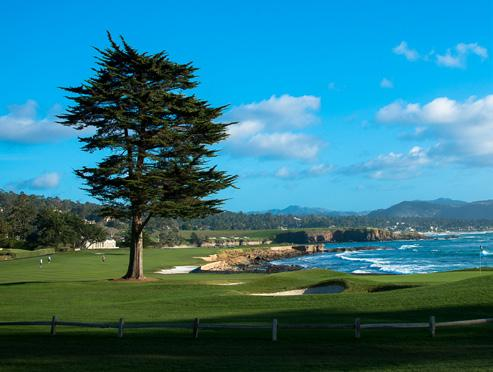 teams) or Bon Secours LEXUS CHAMPIONS FOR CHARITY NATIONAL CHAMPIONSHIP Wednesday, December 5th Sunday, December 9th, 2018 at Pebble Beach Resorts in Pebble Beach, California.