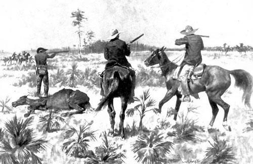 The Cattle Bonanza The Pleasant Valley War (1886-1892): Broke out in