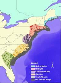 Atlantic Sturgeon Proposed Listing Proposal to list 5 Distinct Population Segments Gulf of Maine (threatened);