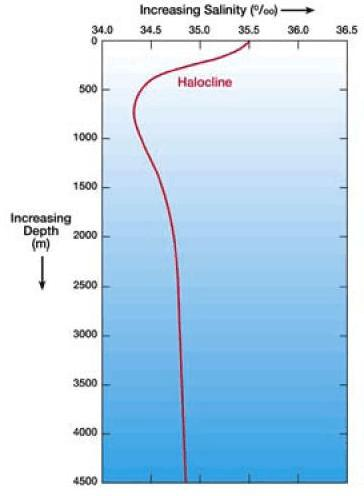 Figure 3: Temperature and Salinity Profile of the Ocean Sources: http://www.windows.ucar.edu/tour/link=/earth/water/temp.html&edu=high http://www.windows.ucar.edu/tour/link=/earth/water/salinity_depth.