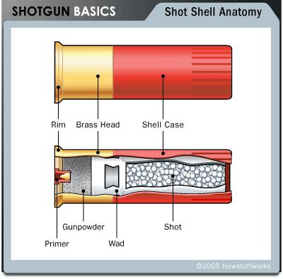 Shotgun Shells Cartridges filled with lead shot are the most common type of shotgun ammunition. Shot consists of small, round lead pellets.