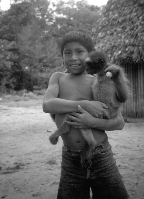 92 M. Lizarralde Figure 5.3. A Barí child holding a young spider monkey pet in the village of Bokshi in June 1999. This pet had a personal name, Olga.