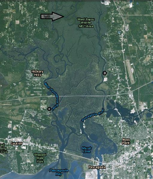 Above: Satellite image of the Pascagoula Marsh. The marsh originates where the Pascagoula River splits into the East and West rivers.