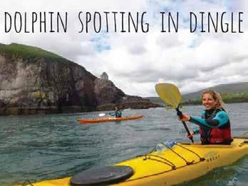 Day 3: Tuesday Dingle Start the morning kayaking to meet our famous dolphin, Fungie, in Dingle Bay.