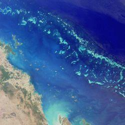 Barrier Reef A coral reef growing parallel to the coastline and separated from it by a lagoon is called a barrier reef The lagoon may develop between