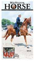 the classics must wear formal attire 389 Thoroughbred Hunter U/S Dover Ring 10:00am