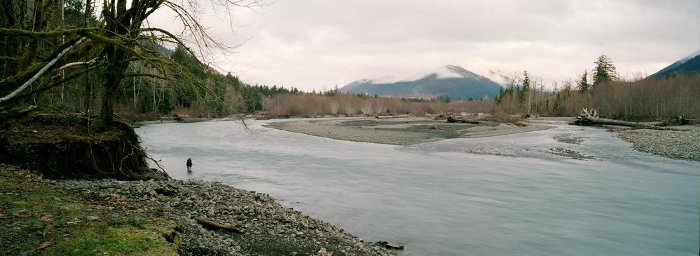 Hoh River Wild Steelhead on the Brink By Dick Burge, Wild Steelhead Coalition Upper Hoh River photo by Jeff Bright No one would have thought 20 years ago that the Hoh River wild steelhead runs would