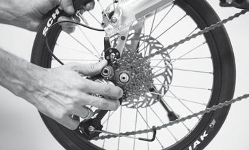 WHEELS AND TYRES Dual Drive gear on Birdy touring Shift to the lowest hub gear (left shifter to gear 1) and the highest