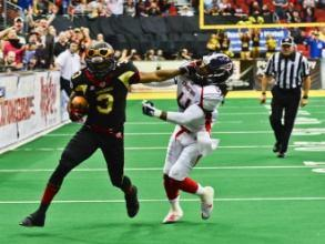 This season, the Arena Football League will consist of