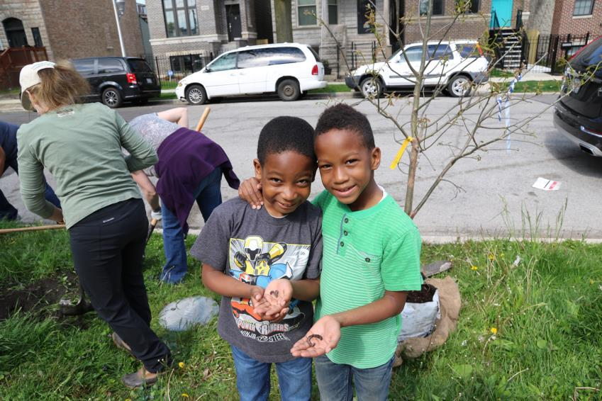 Openlands TreePlanters Grant 1. Get acquainted with your neighborhood: Find 10-40 locations in the public way for trees.