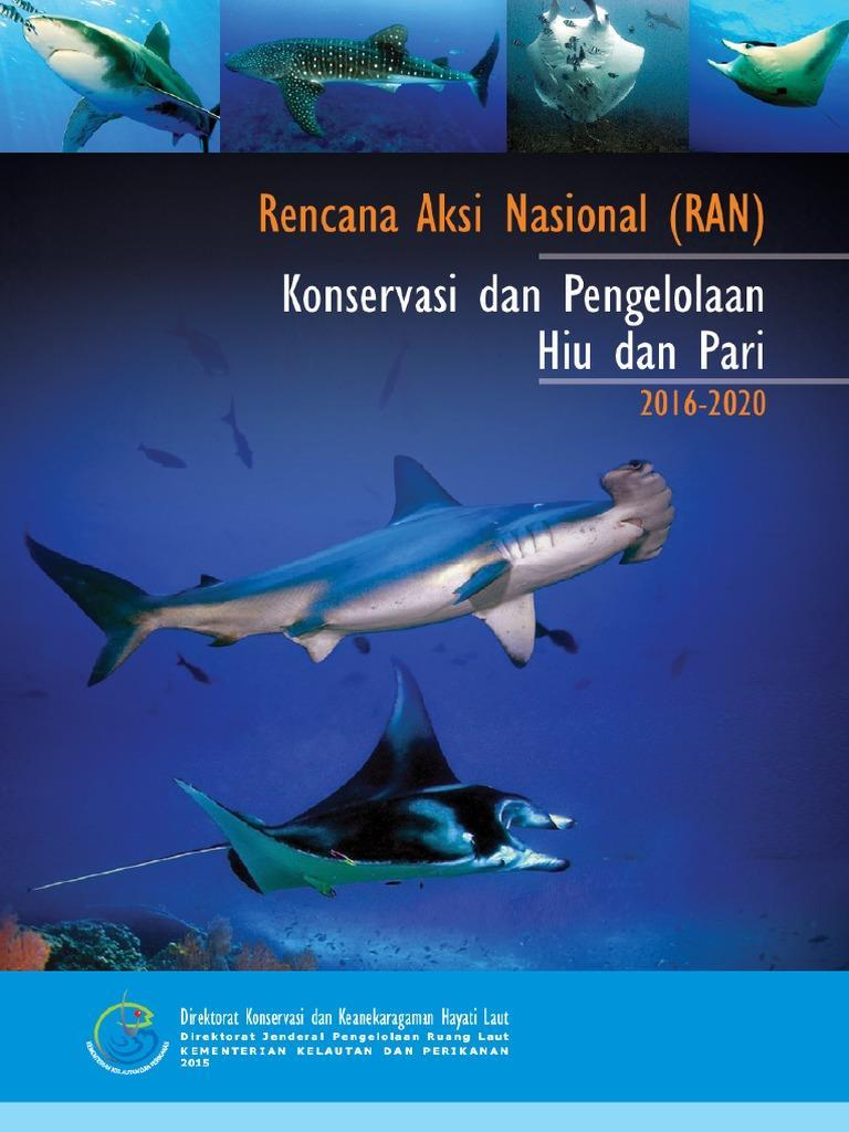 CONCLUSION NPOA Conservation and Management of Sharks and Rays 2016-2020 Indonesia s commitment: to conserve sharks and rays