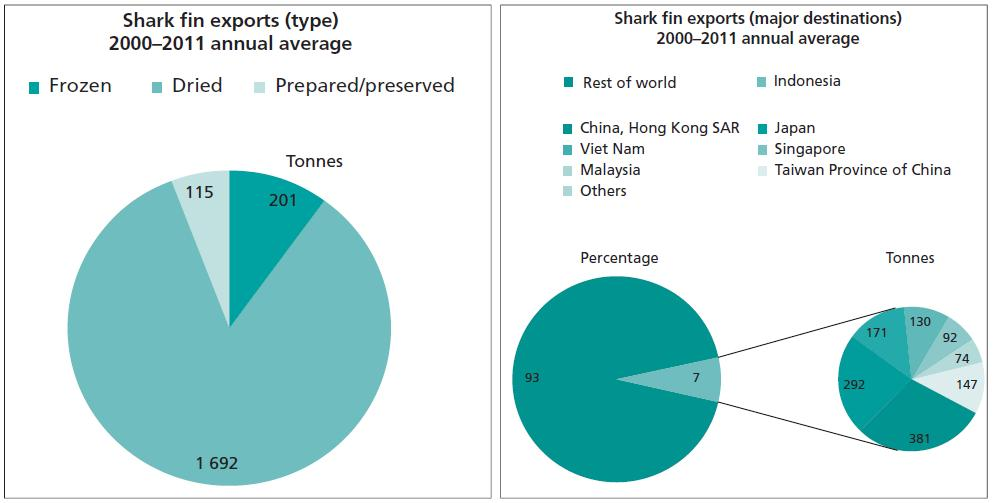 Introduction Export & total economic value of shark