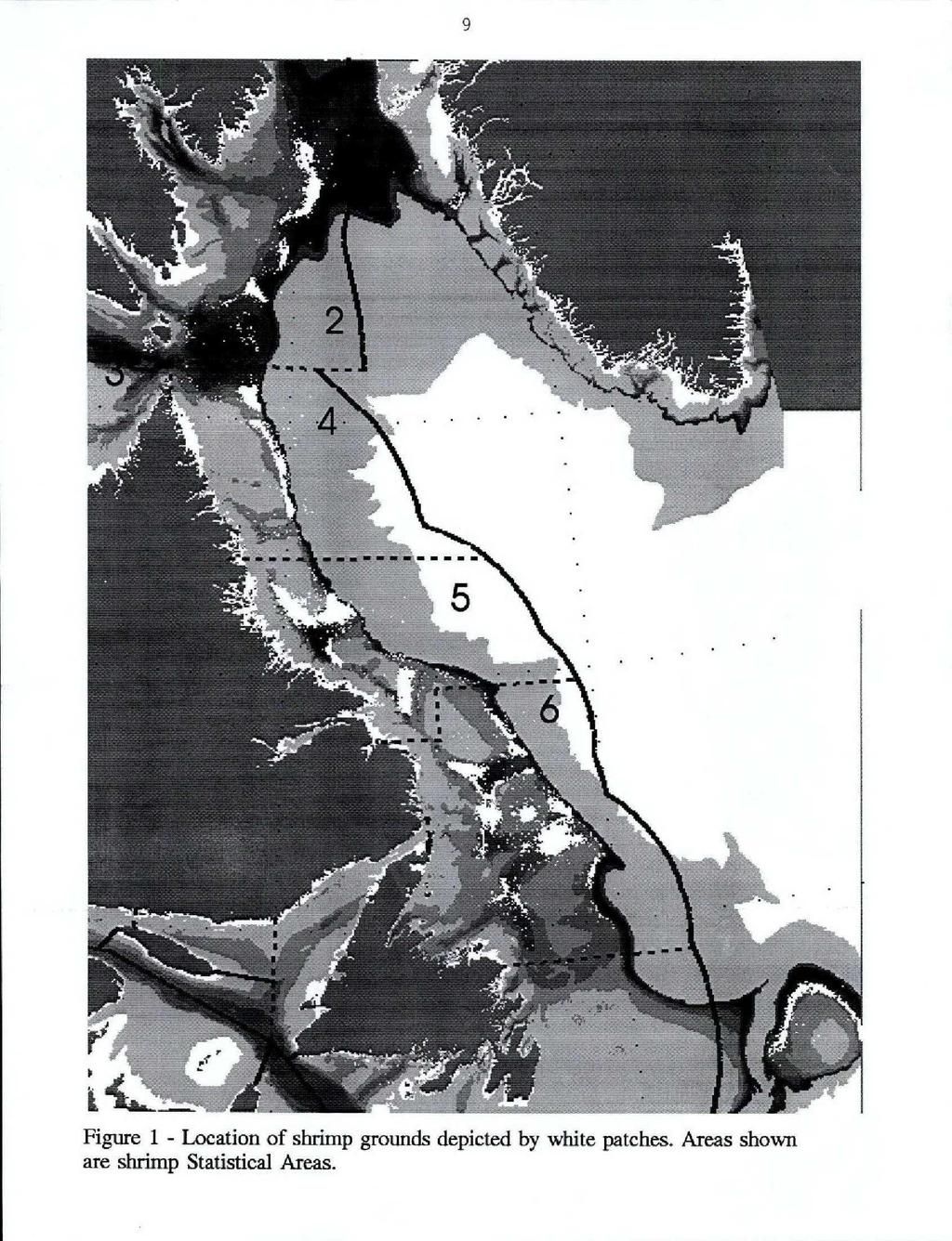 Figure 1 - Location of shrimp grounds depicted by