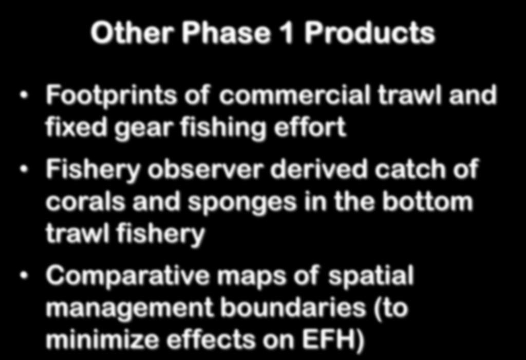 Other Phase 1 Products Footprints of commercial trawl and fixed gear fishing effort Fishery observer derived catch of