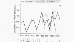 Decline in 1990s Investigated demographic processes to understand factors causing decline JWM 63:315-325 Fawn survival overwinter and