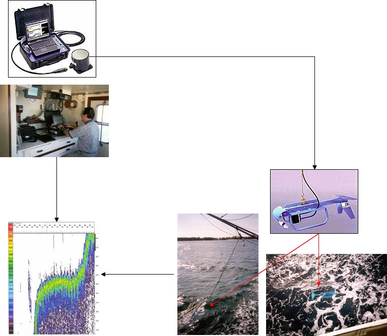 Portable hydroacoustic fish schooling assessment system Assessment of