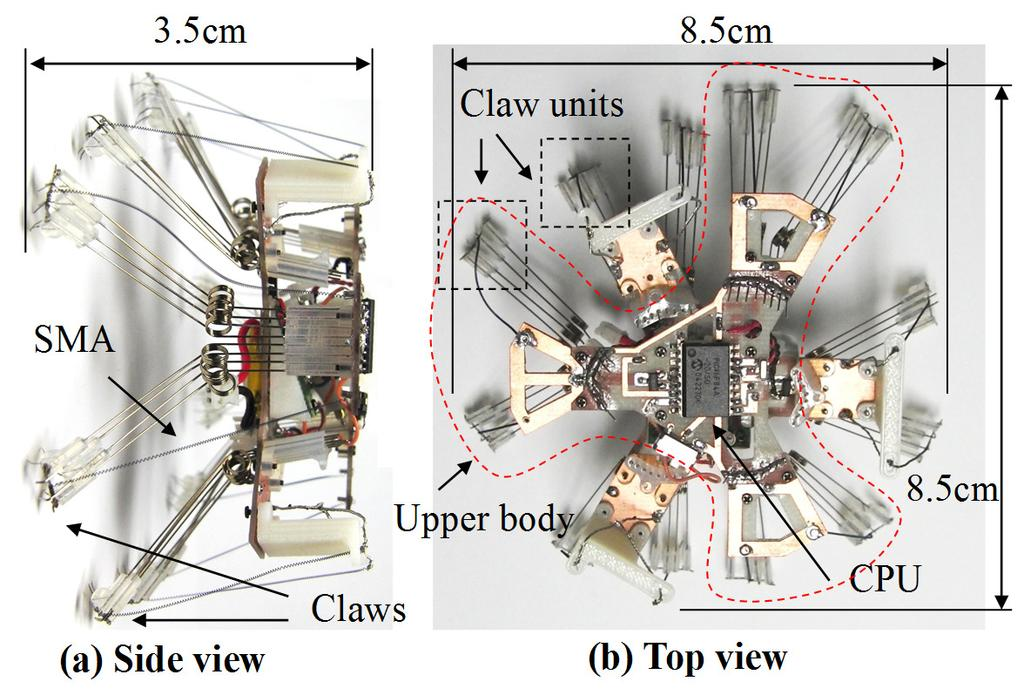 DEVELOPMENT OF cm-scale WALL CLIMBING HEXAPOD ROBOT WITH CLAWS Mayo Funatsu, Yushi Kawasaki, Soichiro Kawasaki, Koki Kikuchi, Department of Advanced Robotics, Chiba Institute of Technology Chiba,