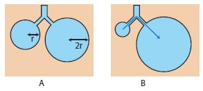 Surface Tension Forces within the Lung The pressure within a truly spherical alveolus (Pa) would normally be calculated as twice the surface tension (Ts) divided by the alveolar radius (r): If Ts is