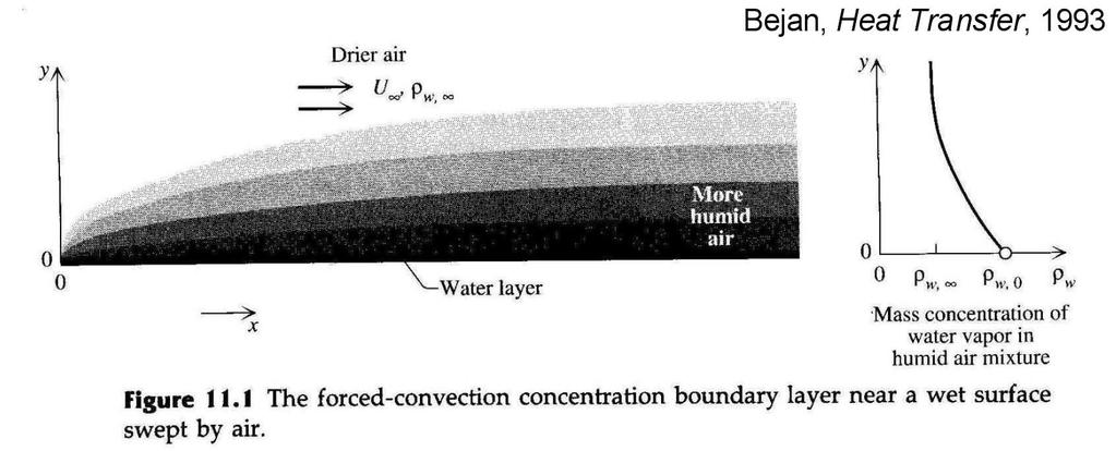 Convection mass