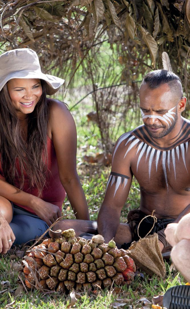 Discover some of the many local nature based tourist attractions, including unique Australian wildlife. See traditional Aboriginal dancers perform or join an Army Duck ride through the rainforest.