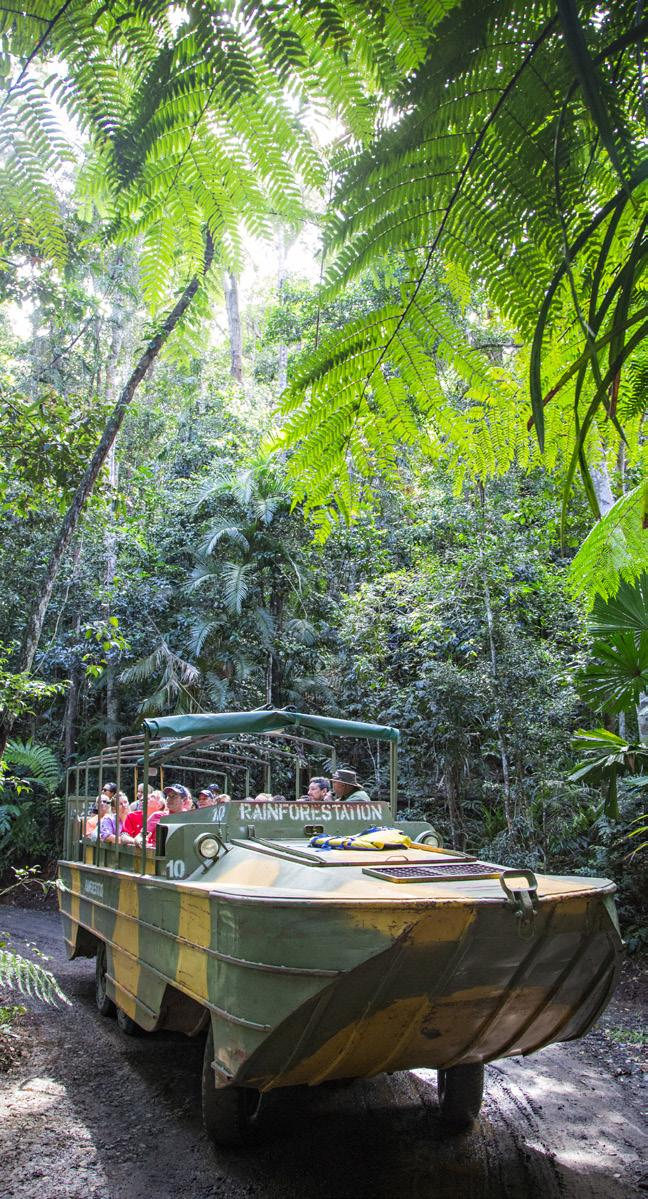 Kuranda TimetableRainforest Experience Travel through the World Heritage-listed rainforest aboard.