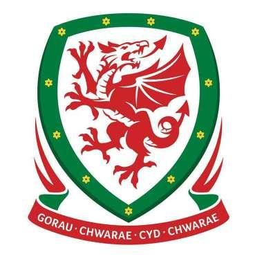 FOOTBALL ASSOCIATION OF WALES FAW REGIONS CUP