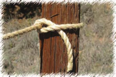 Tighten by pulling both ends in opposite directions. Half Hitch The Half Hitch is generally used for fastening to an object for a right-angle pull.
