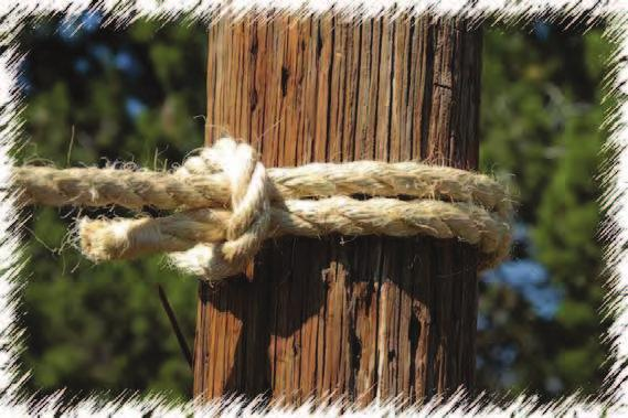 Timber Hitch The Timber Hitch is a simple convenient hitch that does not jam and is untied easily when the pull
