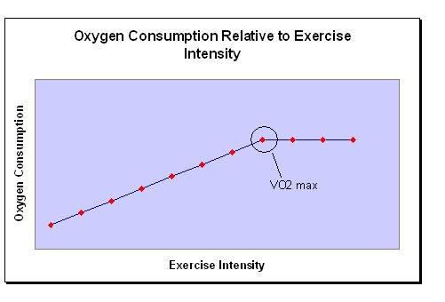 Carbohydrate depletion is not a major factor of fatigue for