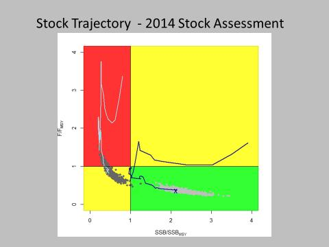 Status of Western Stock of BFT (2014) Stock status sensitive to recruitment assumption 15 Stock Status - 2016 Projections Low Potential High Potential SSB 2015 /SSB MSY 2.41 (2.05-2.96) 0.48 (0.35-0.