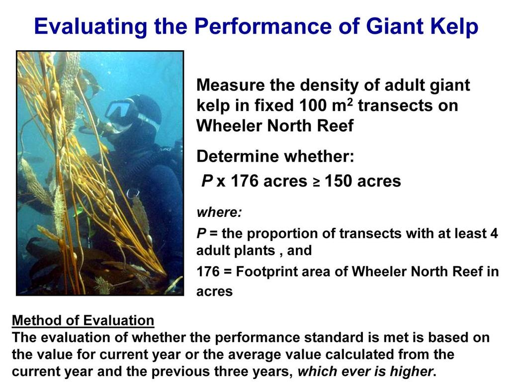 The performance standard for giant kelp is evaluated by measuring the density of giant kelp in the fixed transects across the entire Wheeler North Reef.