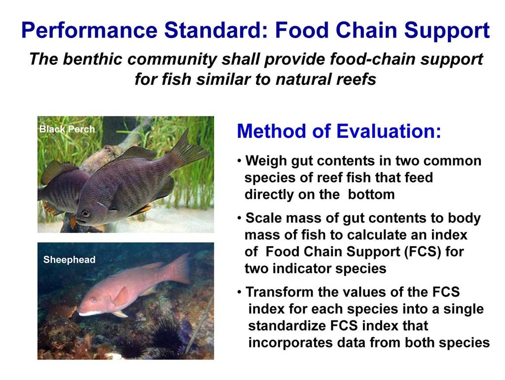There is also a performance standard that requires the benthic community of the Wheeler North reef to provide food for the fishes that feed on the reef in an amount that is similar to that provided